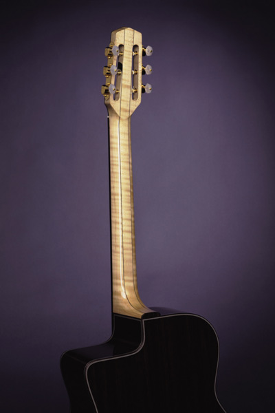 Jimmy Rosenberg Guitar Back